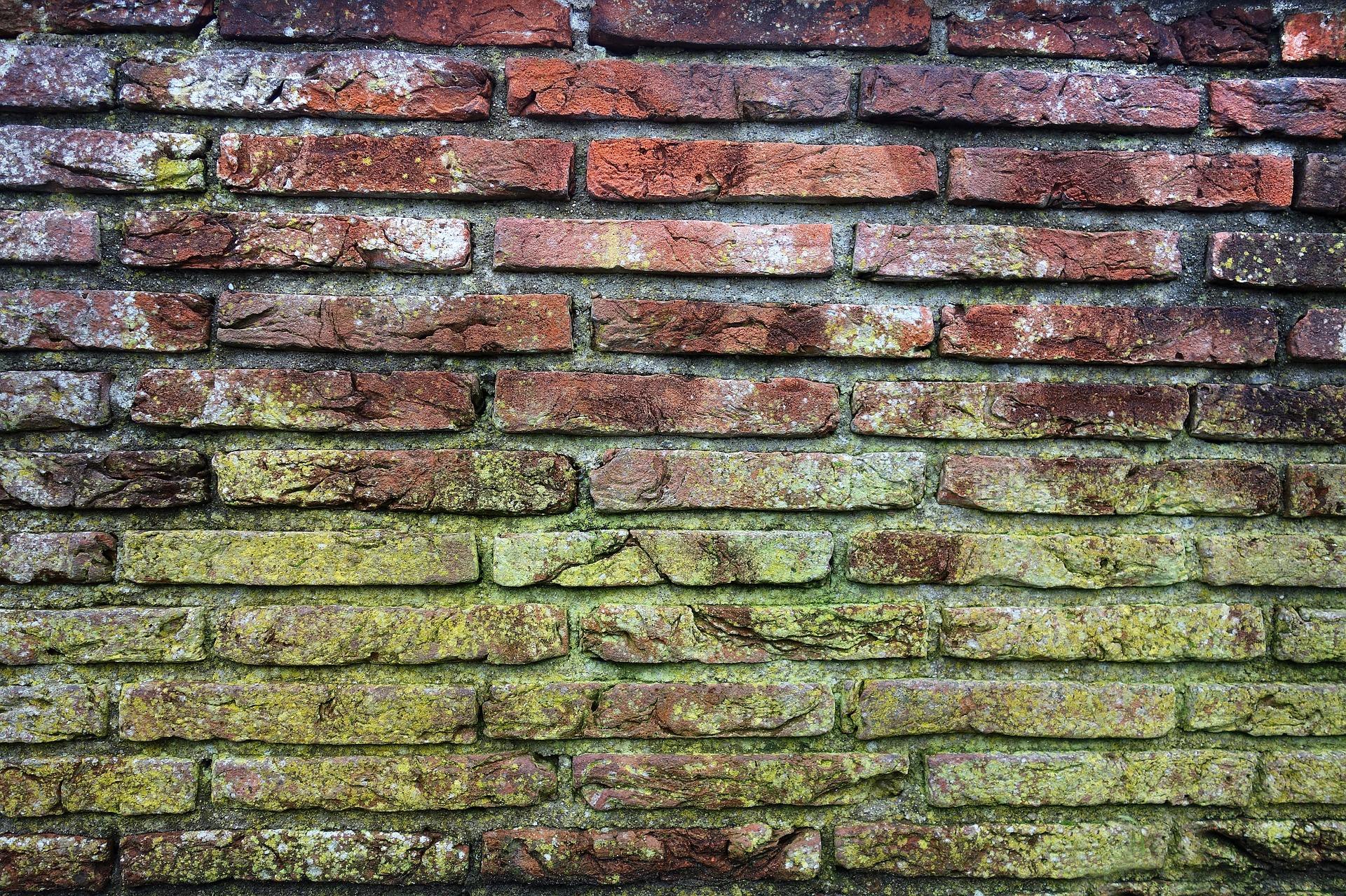 brick-wall-3130685_1920